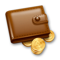 2125-finante-si-buget